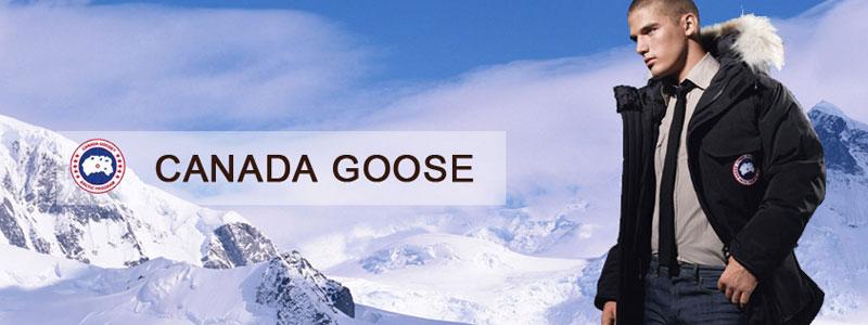 Canada Goose Banner