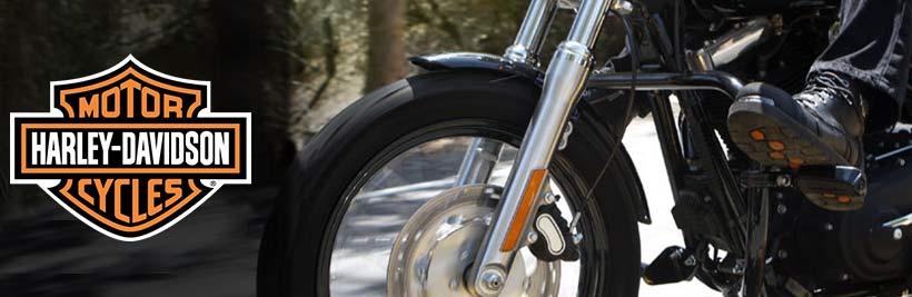 Harley Davidson Bot Modelleri Banner